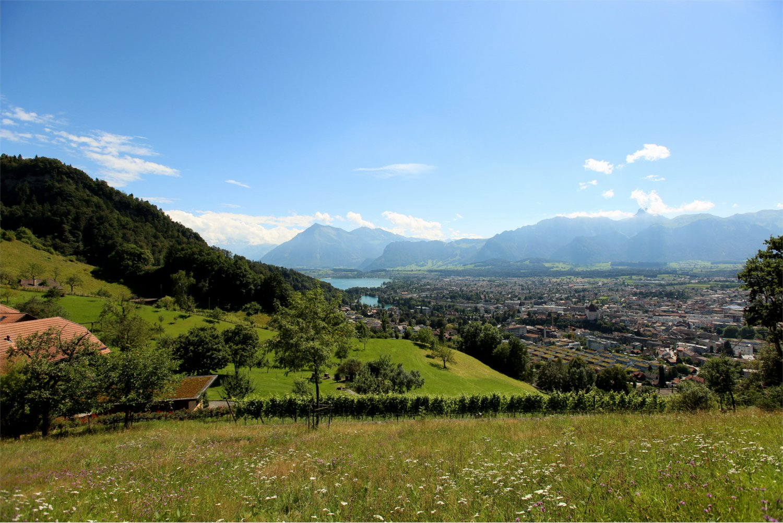 180930_Panorama1